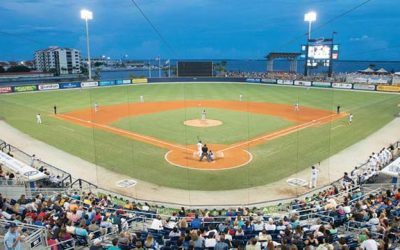 Beyond the Grape is returning for the Blue Wahoos' 2018 Season